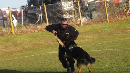 Pc Nick Lofthouse from Suffolk Constabulary's dog section, pictured with one of his canine colleague