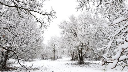 Snow in Colchester. Picture: HELEN ELLIOTT PHOTOGRAPHY