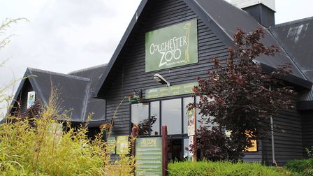 Colchester Zoo. Picture: ARCHANT