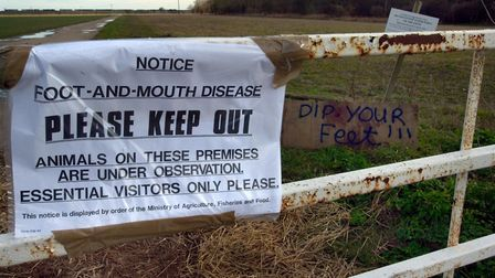 A foot-and-mouth warning sign outside a farm during a previous outbreak of the disease. Government d