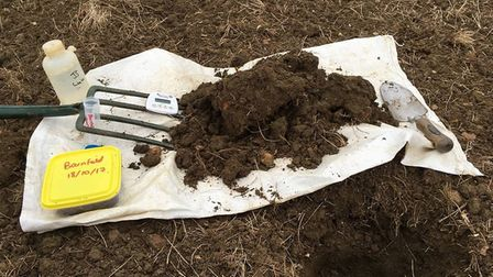 Worms on Brian Barker's farm at Westhorpe. Picture: BRIAN BARKER