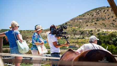 Film crews at the Weeding's horse rescue centre. Picture: SUE WEEDING