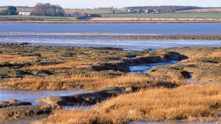 Saltmarsh and mudflats on the Stour Estuary at Copperas Bay, Essex , in the proposed AONB extension.