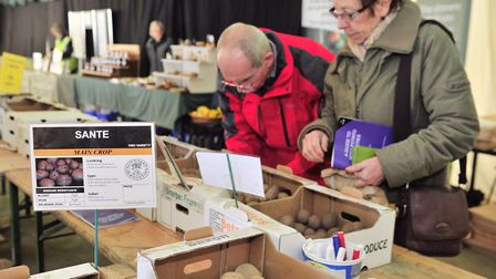 Stonham Barns Potato day is back. Picture: LUCY TAYLOR