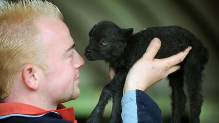 Cuddle a lamb this half term. Picture: ANDY ABBOTT