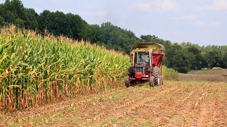 East of England farmland prices are expected to dip further. Picture: ZOONAR/S HEAP