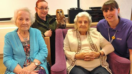 Residents at Cedrus House in Stowmarket get up close to Tawny Owl Rascal and her handler Jess Burrel