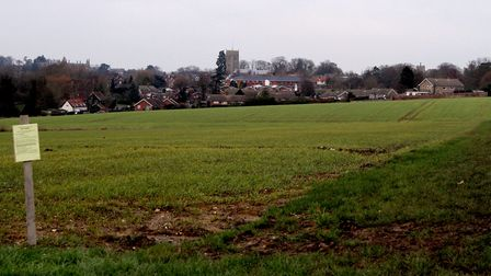 People in Framlingham are opposed to more housing being built on green field sites, such as this one