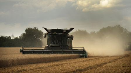 A bad post-Brexit trade deal with the European Union would hit Norfolk and Suffolk's vital food and