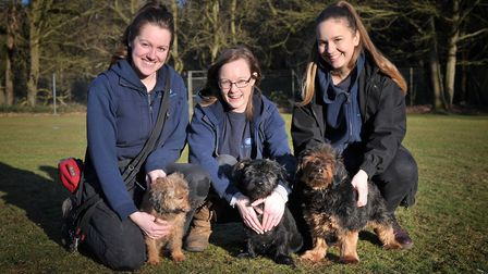 Emma Thresh, Sadie Crowe and Zoe Barrett with Winnie, Lucy and Mitzy. Picture: SARAH LUCY BROWN
