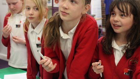 Pupils enjoyed a variety of interactive activities as part of science week at King Edward VI School
