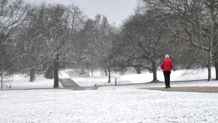 A fresh sprinkling of snow covers Christchurch Park. Picture: SARAH LUCY BROWN