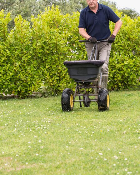 Spreading fertilizer can be important. Picture: Thinkstock/PA.