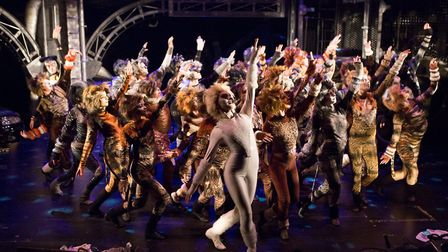 The Co-op Juniors Theatre Company's production of Cats. Picture: MIKE KWASNIAK