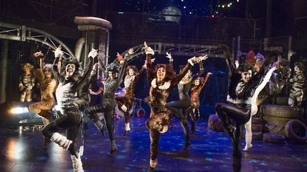 The Co-op Juniors Theatre Company's production of Cats, Picture: MIKE KWASNIAK