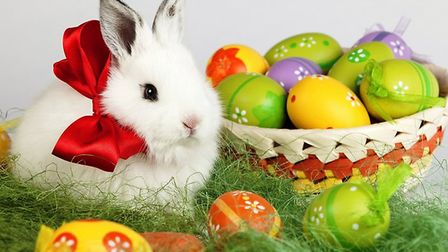 Eggs and bunnies are traditional symbols of Easter, which this year falls on April 1. Picture: GETTY