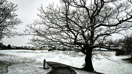 Landseer Park in Ipswich had a sprinkling of snow - much more could be on the way over the next few