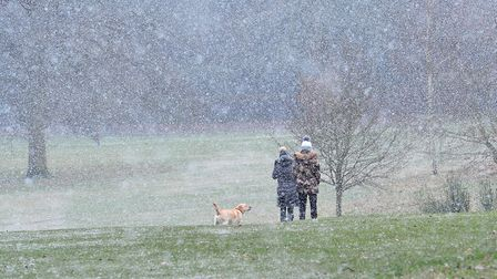 Dog walkers in the snow in Christchurch park. Picture: SARAH LUCY BROWN
