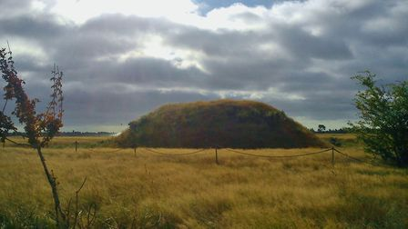 One of the ancient burial mounds on the National Trust's Sutton Hoo site, near Woodbridge. Picture: