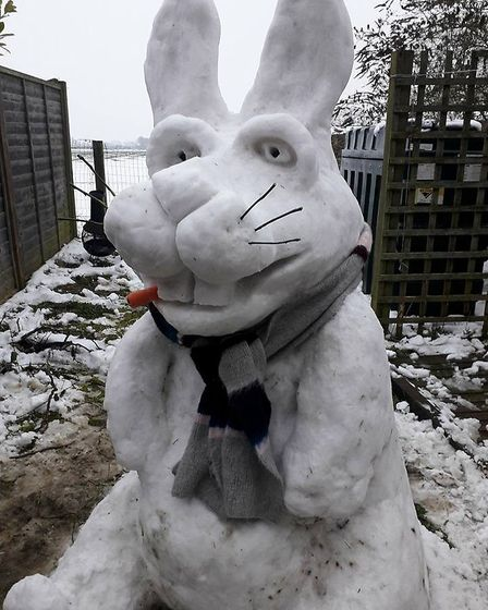 Roger Goodchild's snow bunny in Worlingworth. Picture: ROGER GOODCHILD