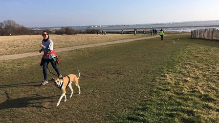 It was a bright but windy morning for last Saturday's Mersea Island parkrun.Picture: CARL MARSTON