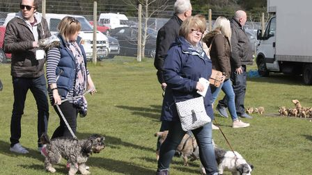 The All About Dogs Show is set to return to Trinity Park, Ipswich, this spring.
