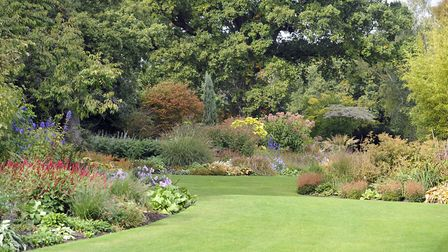 Take a walk around the Beth Chatto Gardens in Elmsett near Colchester this weekend. Picture: SU ANDE