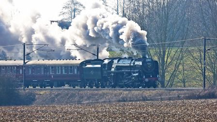 The steam engine Oliver Cromwell travelling through Bentley. Picture: MICK WEBB