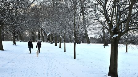 Early risers make the most of the fresh snow in Christchurch Park. Picture: SARAH LUCY BROWN