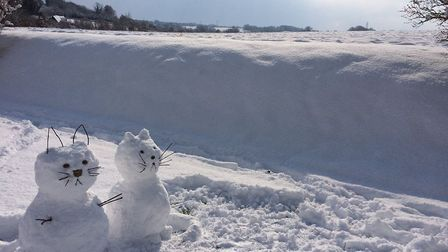 Snow cats created by Nancy and Lindsey Howlett. Picture: NANCY HOWLETT