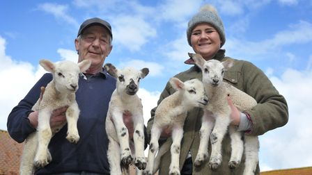 Steve Swan and Farran Hessey with the lambs. Picture; SARAH LUCY BROWN