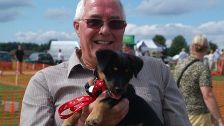 All About Dogs Show. Picture: ALL ABOUT DOGS SHOW