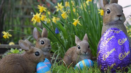 Chocolate eggs are spotted on an Easter trail. Picture: ANDREW MUTIMER