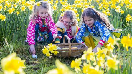 Children can take part in a range of Easter egg hunts around the area this year. Picture: GETTY IMAG