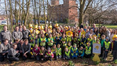 Daffodil celebration at the Suffolk Regimental Museum. Picture: CAROL STREET PHOTOGRAPHY