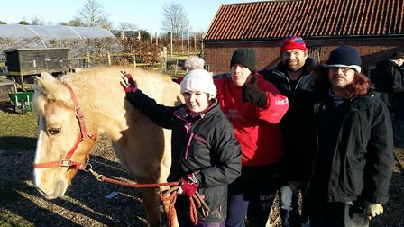 Athena the horse with farm helpers Jade, Steven, Peter and Derek. Picture: TIM FREATHY