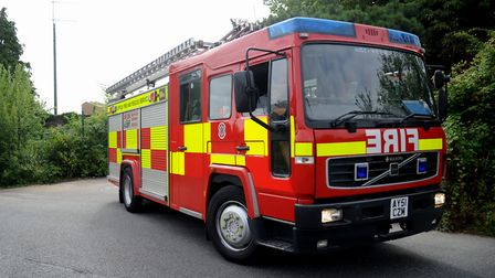 Suffolk Fire and Rescue Service are attending the horse. Picture: SIMON PARKER