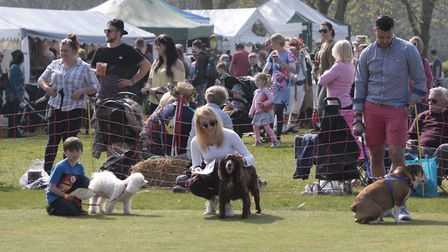 Visitors to last year's country show. Picture: NIGEL BROWN