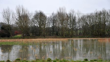 Flooded fields near Earl Stonham. Picture: SARAH LUCY BROWN