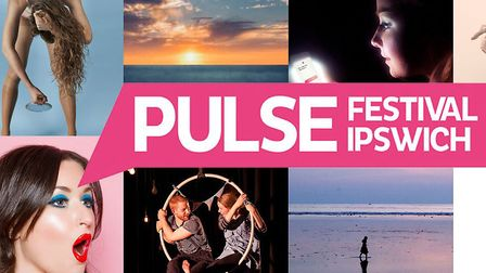 The New Wolsey Theatre has announced the line-up for this year's PULSE Fringe Festival. Picture: NEW