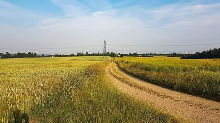 Routes will range from four to six miles and incorporate a mix of trails, footpaths and tracks. Pict