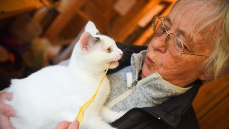 Centre owner Maggie Jackaman with one of the cats. Picture: GREGG BROWN
