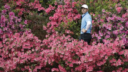 Rory McIlroy, of Northern Ireland, hits from the azaleas on the 13th hole during the third round at