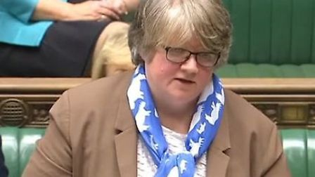 Suffolk Coastal MP Therese Coffey said she had raised the issue with ministers. Picture: ARCHANT LIB