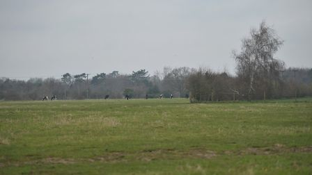 Land in Grange Road, Lawford, where the homes could be built. Picture: SARAH LUCY BROWN