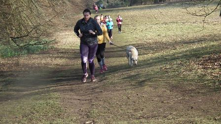 People taking part in previous park run's in Nowton Park.