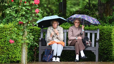 Rain bringing outs the umbrellas in Abbey Gardens, Bury St Edmunds. Picture: GREGG BROWN