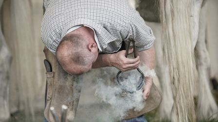 Shoeing a horse at the South Suffolk Show at Ampton Racecourse, near Ingham. Picture: MARTIN GRAYLIN