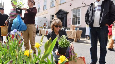 Bungay Spring Garden Market. May 2016. Picture: JAMES BASS