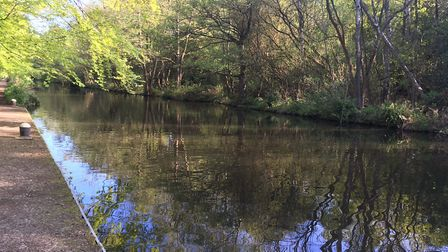 The Basingstoke Canal, which forms part of the course of the Frimley Lodge parkrun. Picture: CARL MA